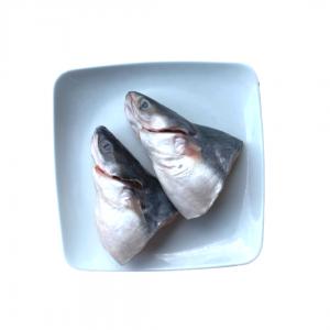 Kepala_Ikan_Patin